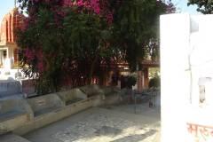 A place near by Banyan Tree